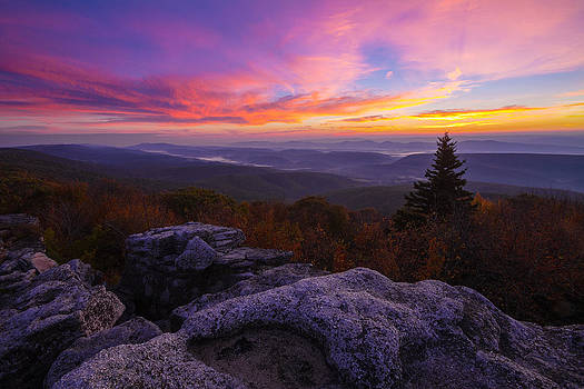 Sunrise at Dolly Sods in West Virginia by Jetson Nguyen