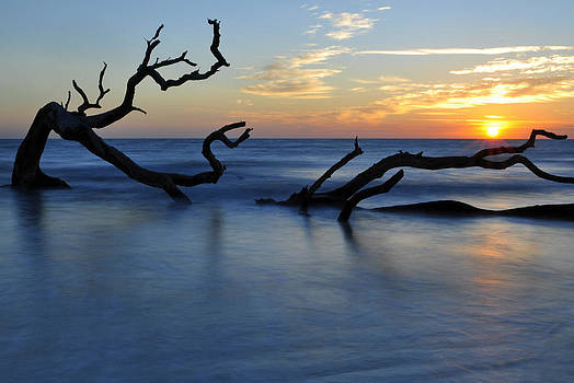 Sunrise at Driftwood Beach 7.3 by Bruce Gourley