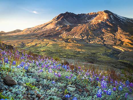 Sunrise at Mount St. Helens by Kyle Wasielewski