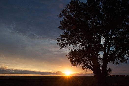 Sunrise Awaited by Shirley Heier