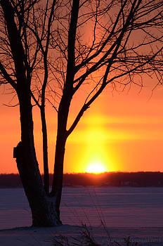 Marianne Kuzimski - Sunrise Erupts