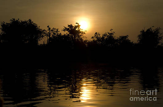 Sunrise in Amazon by Ricardo Lisboa