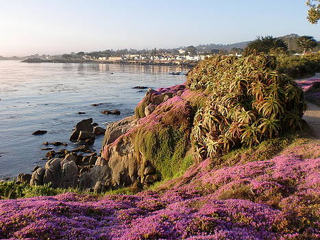 Sunrise in Pacific Grove by Keeza Starr