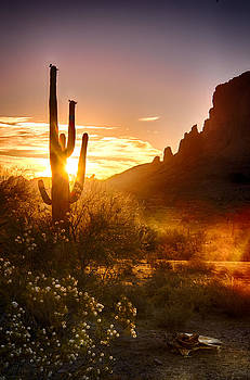 Saija  Lehtonen - Sunrise in the Superstitions