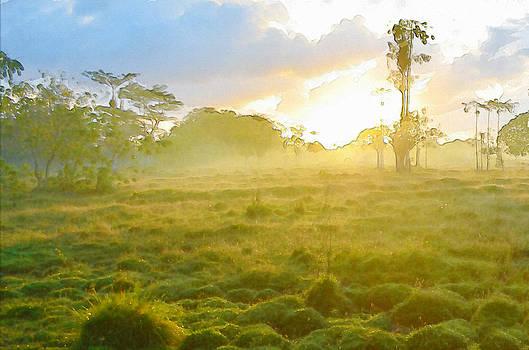 Sunrise In The Wilderness by Anton Joseph