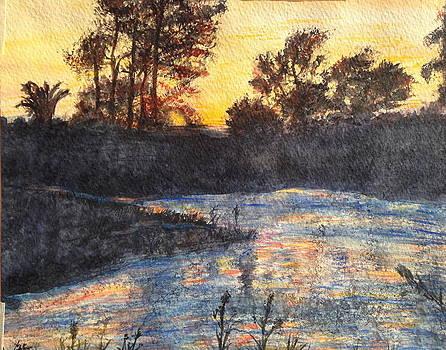 Sunrise on Florida Lake by Carol Warner