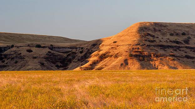 Charles Kozierok - Sunrise on the Foothills