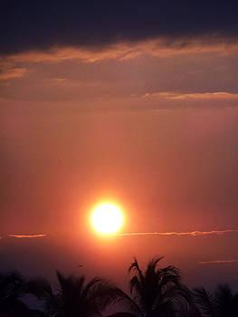 Sunrise Over Banderas Bay by Anne Mott