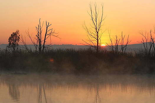 Sunrise over Rietvlei by Anita Engelbrecht