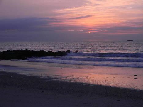 Sunrise Serenity by Eric Barich