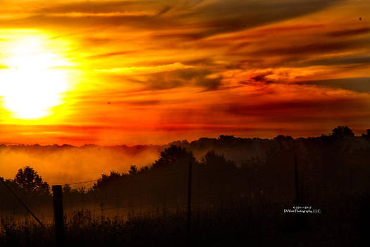 Sunrise by Stephani JeauxDeVine