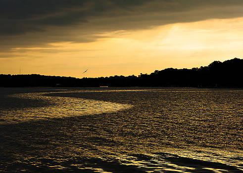 Sunrise Still Pond by Eleanor Ivins