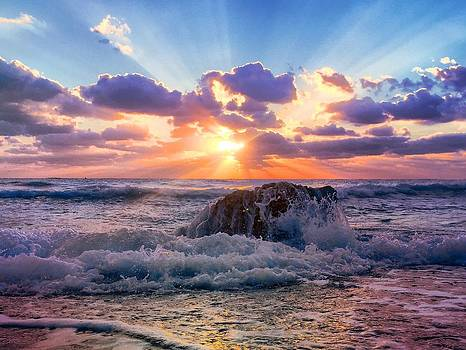 Sun's rays by the old coral. by Andrew Royston