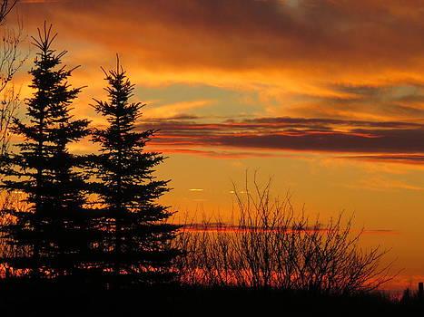 Sunset 1 by Linda Koch