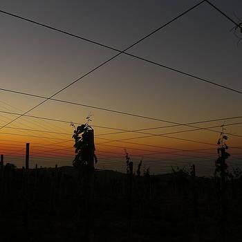 Sunset 4 by Jl Zufiria