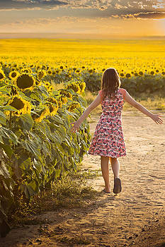 Sunset and Sunflowers by Linda Storm