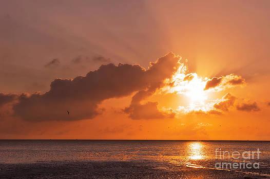 Angela Doelling AD DESIGN Photo and PhotoArt - Sunset