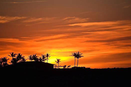 Sunset at Ka'upulehu by Lehua Pekelo-Stearns