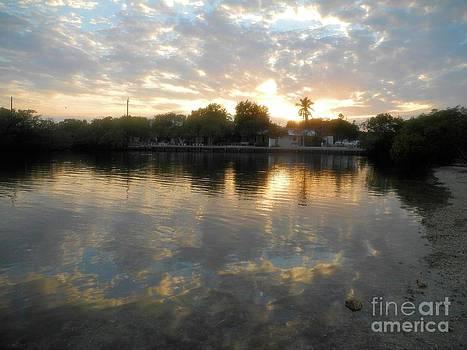 Adam Jewell - Sunset At Pennekamp