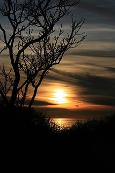 Sunset at the beach. by Marcel  J Goetz  Sr