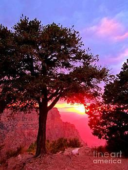 John Malone - Sunset at the Grand Canyon Three