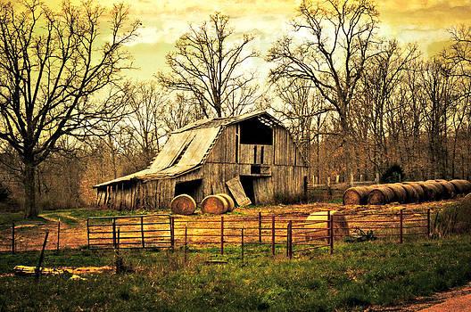Marty Koch - Sunset Barn