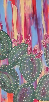 Marcia Weller-Wenbert - Sunset Cactus 2