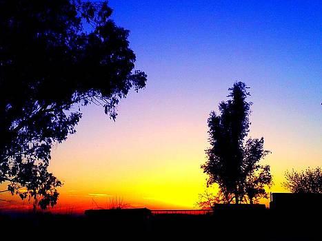 Sunset Color by Franshisca Delgado