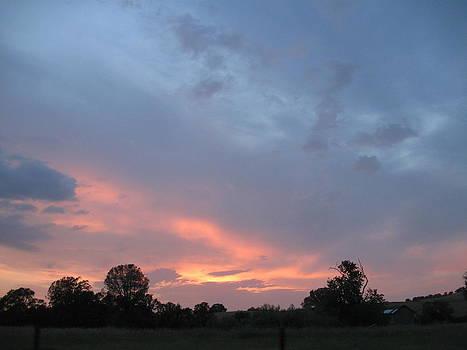 Sunset  by Debra Madonna