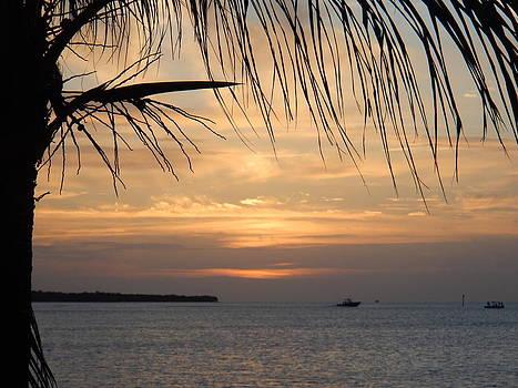 Sunset Fishing by Susan Sidorski