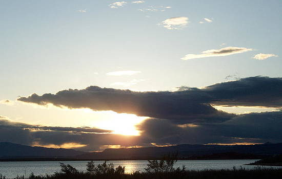 Sunset Flight by Donna Jackson