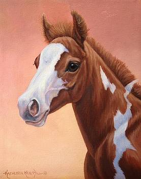 Sunset Foal by Kathleen  Hill