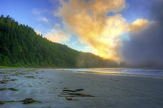 Sunset Fog on the beach by Rod Mathis