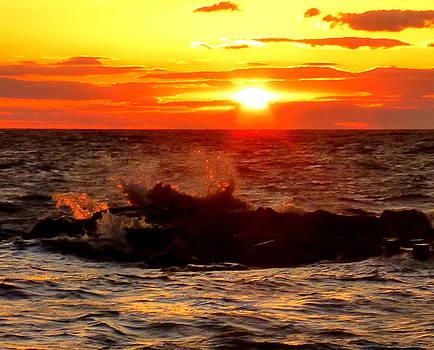 Sunset Gold by Glenn McCurdy
