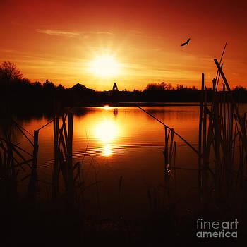 Sunset Ii by Martin Dzurjanik