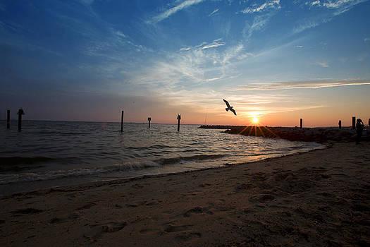 Regina  Williams  - Sunset in Newport News VA five of six