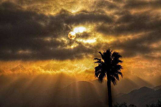 Sunset in Ojai by Brooke Clark