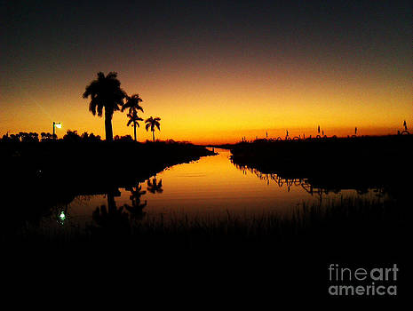 Sunset in the Everglades by Ruthann Carlson