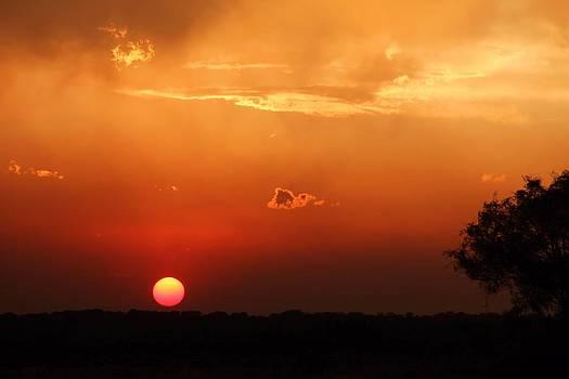 Sunset in West Texas by Elizabeth Budd