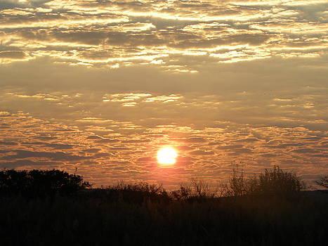 Sunset by Kyla Heath