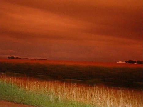 Sunset by Arielle Cunnea