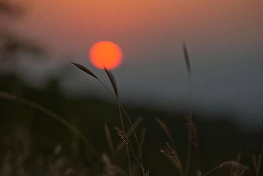 Sunset by Mariana Atanasova