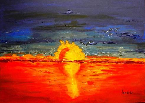 Sunset of the seagulls  by Jacqueline Schreiber