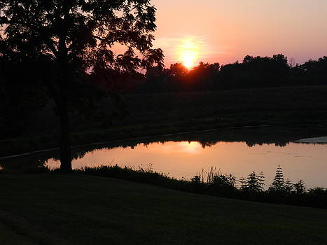 Sunset On A Pond by Linda Brown