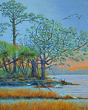 Sunset on Hunting Island Lagoon by Dwain Ray
