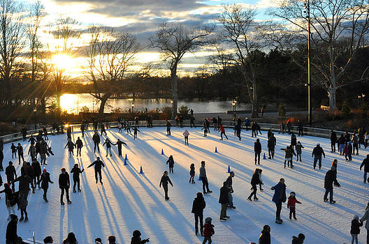 Sunset on Ice  by Diane Lent