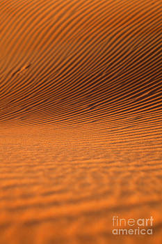 Fototrav Print - Sunset on sand dunes in Dubai United Arab Emirates