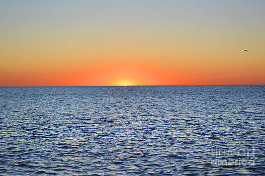 Sunset on the Gulf 2 by Robert  Suggs