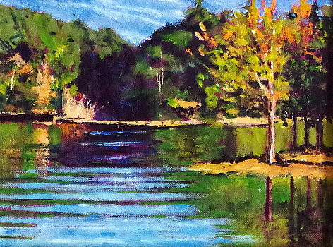 Sunset Over Lake Nicol by Wayne Fair