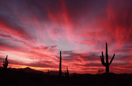 Sunset Over Laveen by Laurie Larson